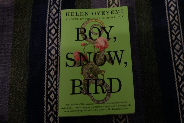 Boy, Snow, Bird by Helen Oyeyemi.